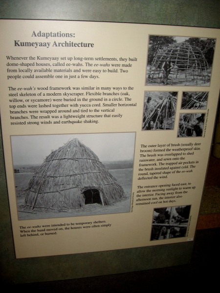 The Kumeyaay built dome-shaped houses from oak, willow or sycamore branches. The simple structures were called ee-wahs.