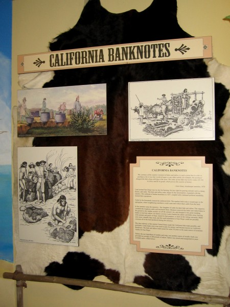 Cattle by the thousands roamed San Diego's hills. Their dried hides were used in trade and were sometimes referred to as California banknotes.
