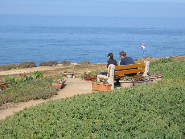 Just south of the Gliderport's launch area, a bench makes a perfect place to experience sun, ocean and sea breeze.