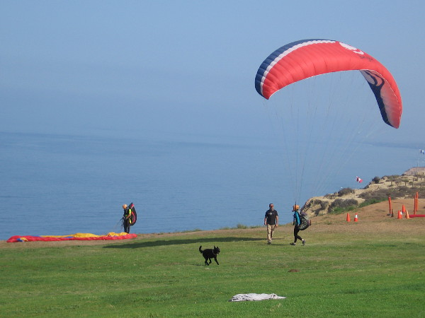 The breeze has picked up a bit. More students are trying out their equipment on safe land. A happy dog is loving life.