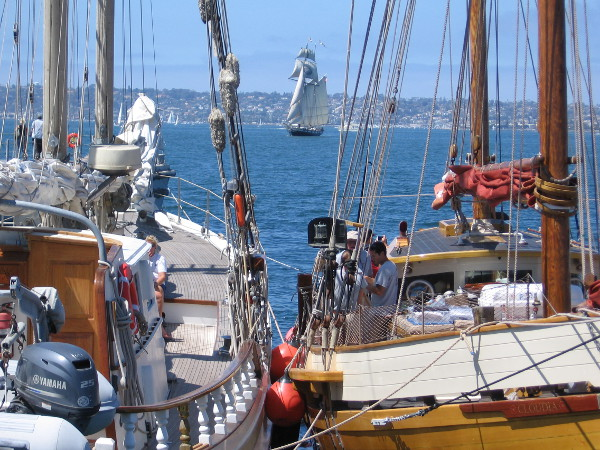 Out on the big bay and along the Embarcadero, many beautiful sailing ships are part of this year's annual Festival of Sail in San Diego.