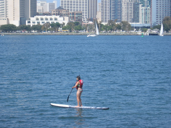 A standup paddleboarder off Coronado, sailboats and the San Diego skyline in the background.