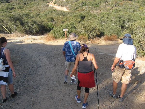 Naturalist Mike Kelly leads a small group of hikers into Los Peñasquitos Canyon Preserve from the Del Mar Mesa trailhead.