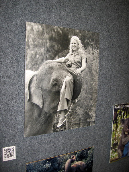 Many photos show Joan Embery through the years--in Bonita, at the San Diego Zoo and Wild Animal Park, travelling the world, and on the Pillsbury Ranch.