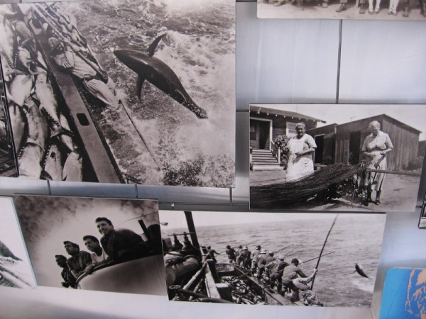 Historical photos of Little Italy fishermen at work off the coast of San Diego.