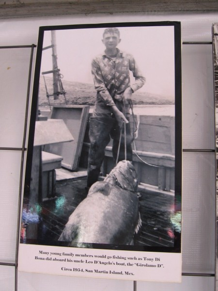 Photo of young man on a boat with a very large catch.
