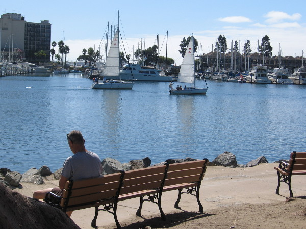 Many benches along Spanish Landing Park provide views of the peaceful water and Harbor Island.