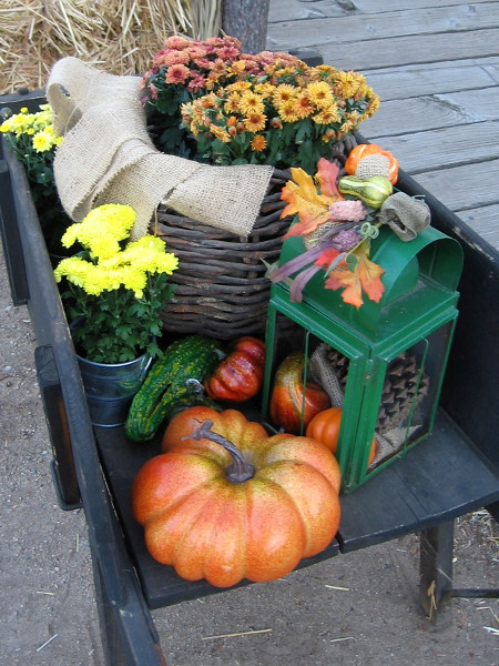 A beautiful arrangement of flowers, pumpkins and gourds graces a rustic Old Town boardwalk.