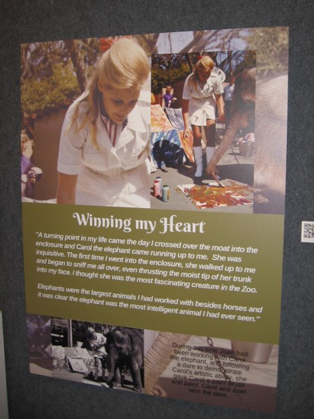 Display at the Bonita Museum and Cultural Center documents a moment in the life and career of Joan Embery.
