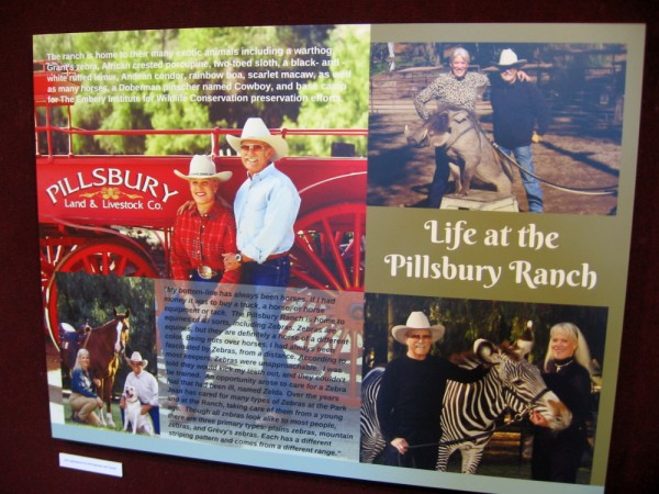 Today, the 50-acre Pillsbury Ranch is the home of Joan Embery and her husband Duane Pillsbury. Students visiting the ranch learn about the many different exotic animals that live there.