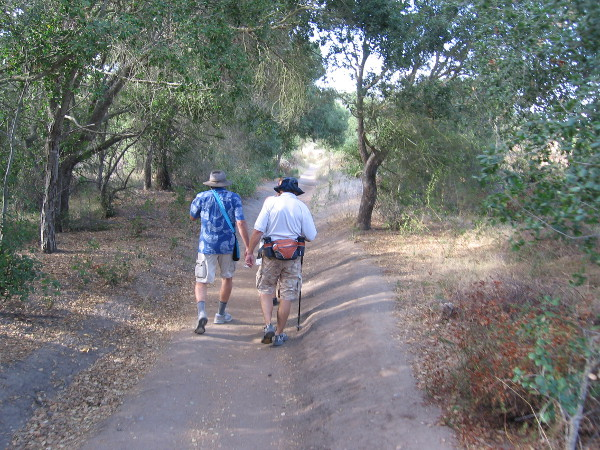 Heading west through the beautiful canyon in the shade of oaks, sycamores and willows. It's an easy, pleasant hike.