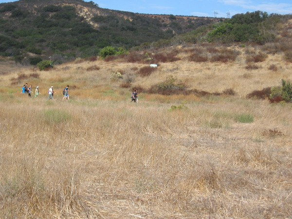Los Peñasquitos Canyon Preserve is a very popular place for jogging, hiking and mountain biking. Even marathoners use it for training.