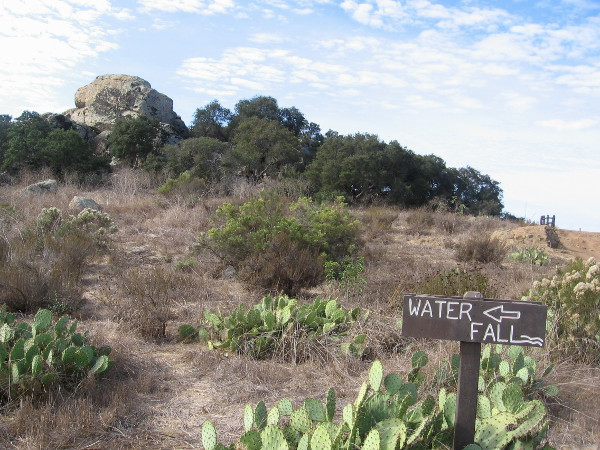 I see lots of prickly pear cacti. Now we are getting close to the popular waterfall!