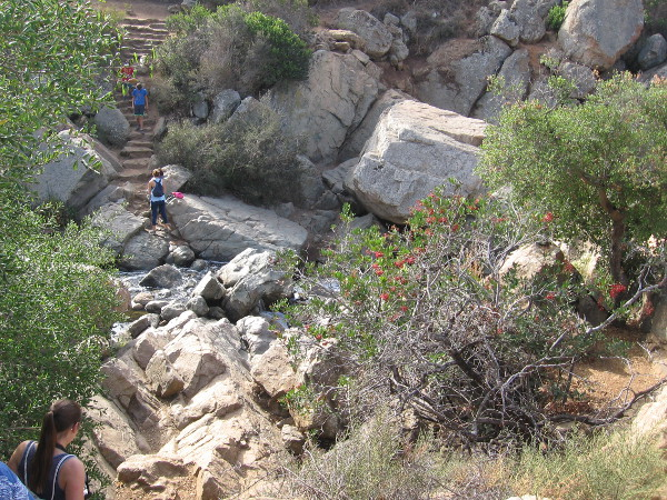 Descending rough stone steps to the waterfall. I learned the steps were a project of an Eagle Boy Scout.