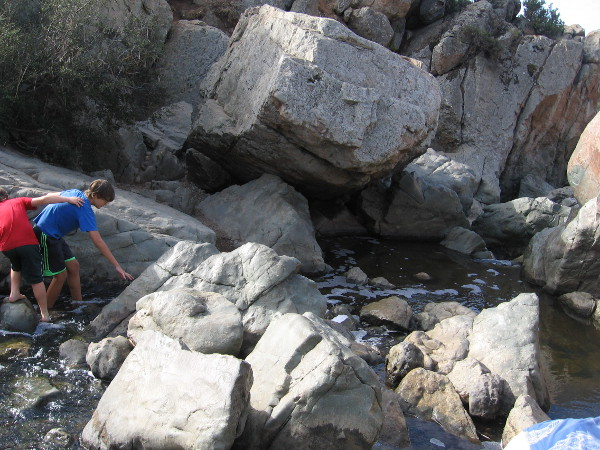 The small waterfall and its rocky pools are located near the center of Los Peñasquitos Canyon. It is the destination of many hikes. A great place to relax, cool off, and listen to the soothing water.