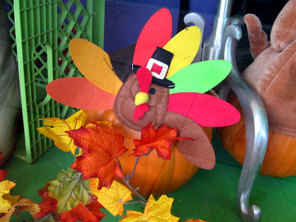 A turkey (or two) is lurking in San Diego. It seems that Thanksgiving is fast approaching!