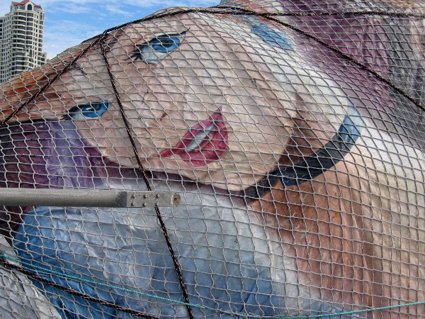 A Disney princess has been captured in a large fishing net on the Tuna Harbor pier.
