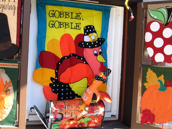 This turkey likes to say gobble, gobble. A bird of few words.