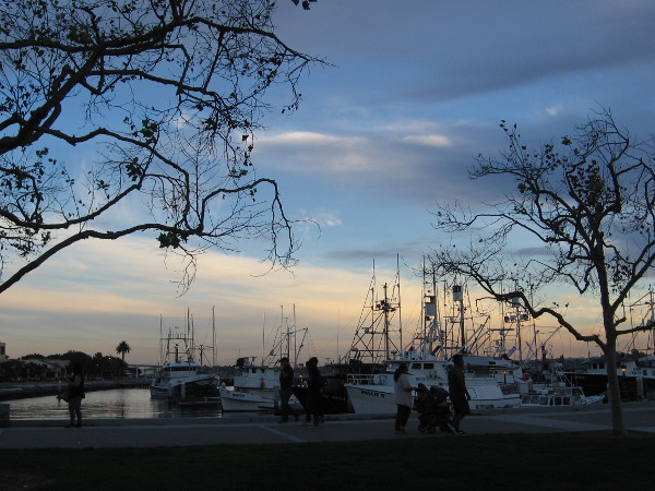 Day nears an end. The fishing boats at Tuna Harbor quietly float beneath a changing sky.