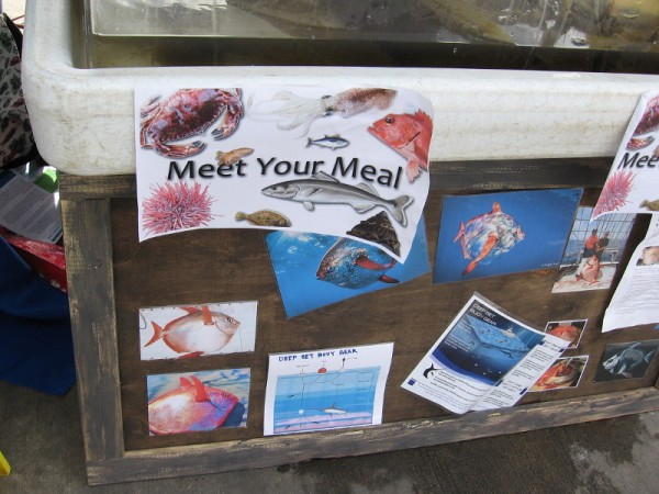 Meet your meal! At one table I discovered some interesting photos and literature, including a diagram of deep-set buoy gear used to catch swordfish.