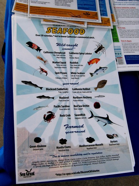 This poster shows the most common seafood commercially harvested in California. Many of these species can be purchased at Tuna Harbor Dockside Market.