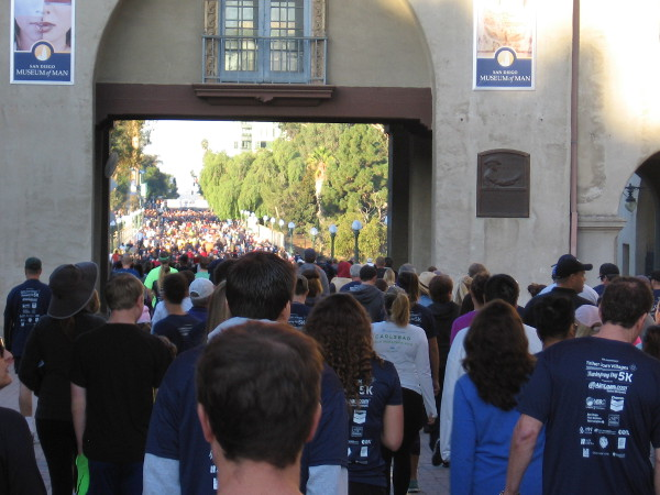 Thousands of participants pass over the Cabrillo Bridge, just prior to beginning the Father Joe's Villages Thanksgiving Day 5K.
