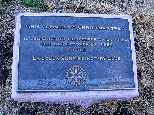 This Community Christmas Tree is dedicated to the people of La Jolla this day, October 27, 1984, by the La Jolla Sunrise Rotary Club.