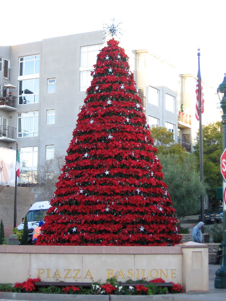 I hope and pray Santa brought lots of gifts. He'd better not forget Little Italy's poinsettia tree in Piazza Basilone.
