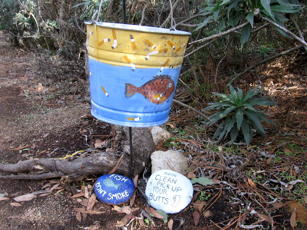 A bucket for cigarette butts next to the sidewalk. Fish! Don't Smoke! Now that was an unexpected discovery!