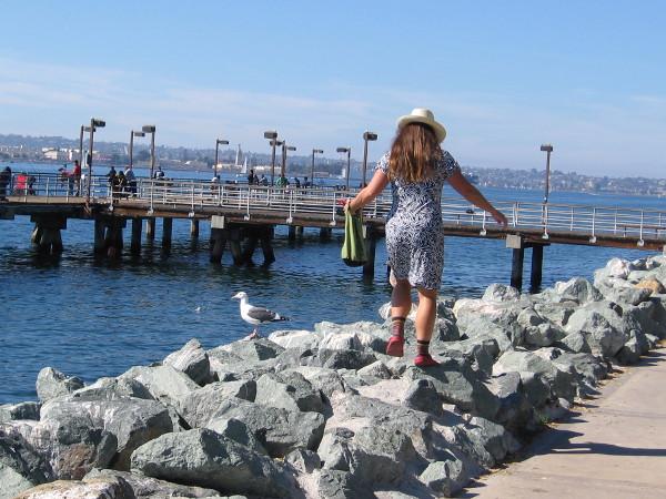 Walking on some rocks on a fine sunny San Diego day.