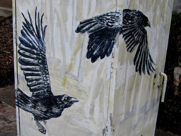 More cool street art. Two crows fly across the angled sides of a utility box on North Torrey Pines Road.