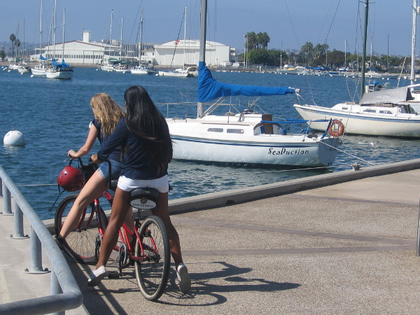 Benches can be found overlooking moored boats in San Diego Bay's Crescent Area.