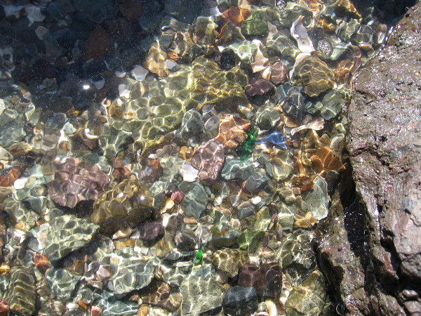 Dazzling bits of stone and broken glass in the water of Mission Bay.