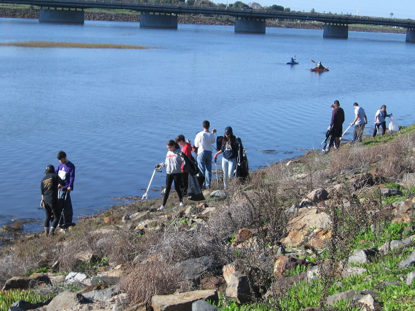 Many ordinary people came out today to help clean up the San Diego River Estuary.