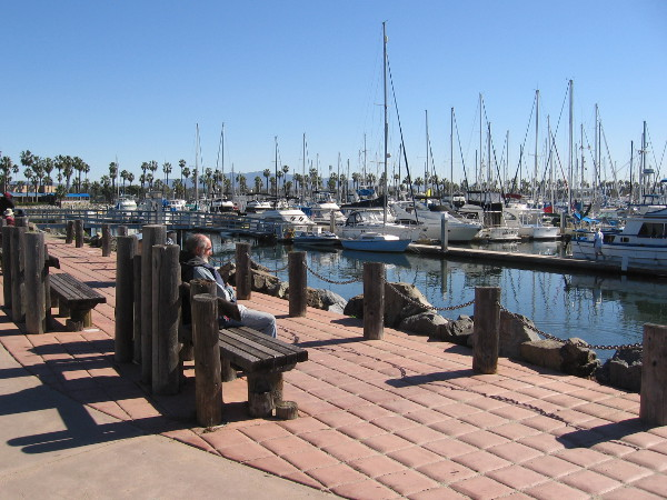 Just sitting on a bench at the Chula Vista Marina. Masts of sailboats touch the clear sky. Another sunny day by the water.