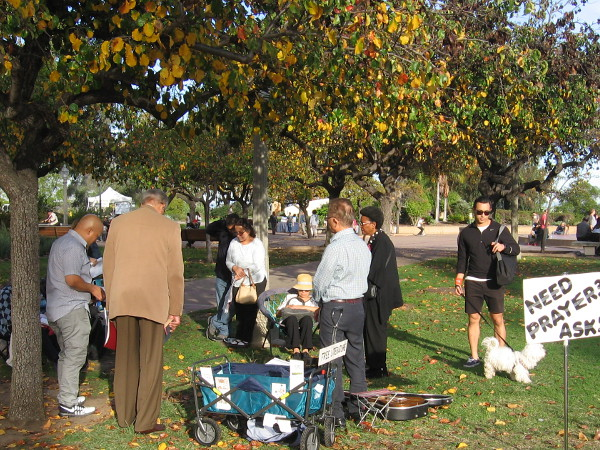 A group prays under a beautiful tree. Human hope, pain, love . . . among the dropping leaves.