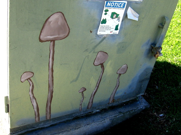 Are mushrooms sprouting from the nearby grass?