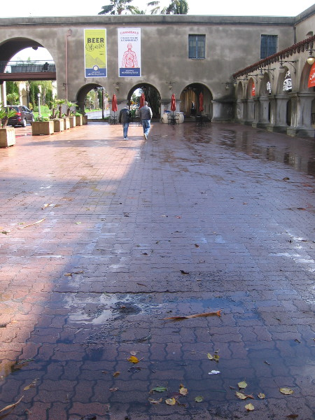 Leaves, puddles and a few early visitors entering Balboa Park after the latest San Diego storm.