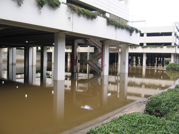 The parking structures at Fashion Valley Mall that are susceptible to flooding were definitely well underwater. Thank goodness, I saw no submerged cars.