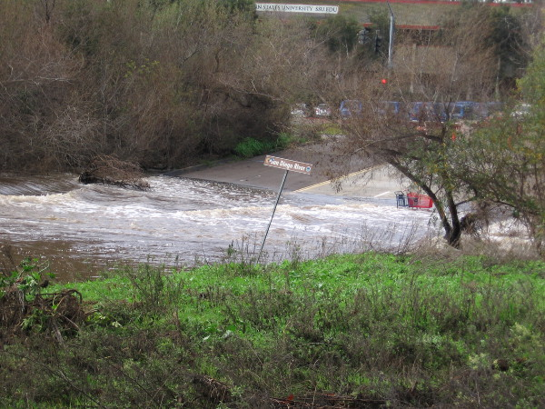 As usual, the San Diego River was flooding Avenida del Rio south of the mall. The short street is appropriately named!