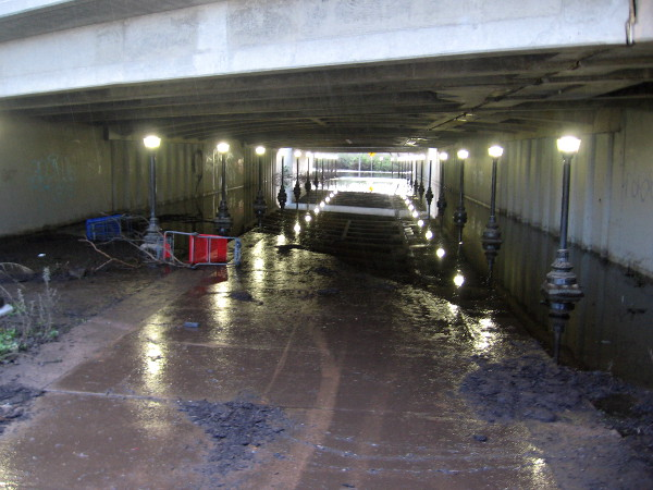 The Highway 163 underpass was flooded and muddy. I had to walk another way around to work. Good thing I got an early start!