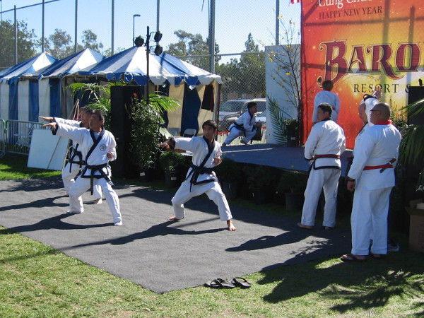 Martial arts students demonstrate some moves for the gathering crowd.
