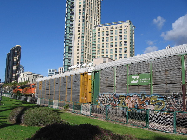 A car carrier freight train covered with graffiti has stopped along Harbor Drive.