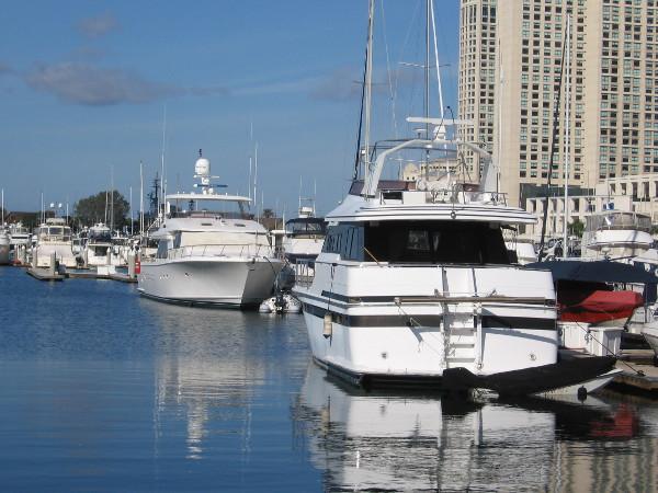 Just beautiful yachts in the Marriott Marina.