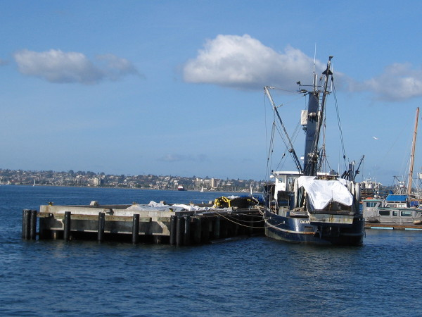 Uh, oh! Look what I spotted. The live bait seiner Cachalot seems to be drifting away from the Tuna Harbor Pier! Perhaps last night's storm is the reason.
