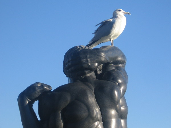 A gull and its sculpted human perch together greet a sunny morning beside San Diego Bay.