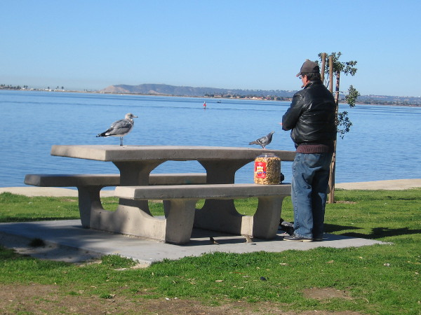 Feeding birds at a park picnic bench.