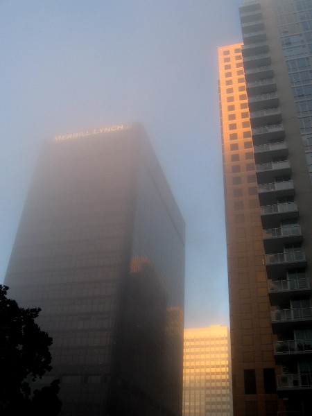 Fog and sunlight create a magical morning photo of skyscrapers on B Street in the heart of San Diego.