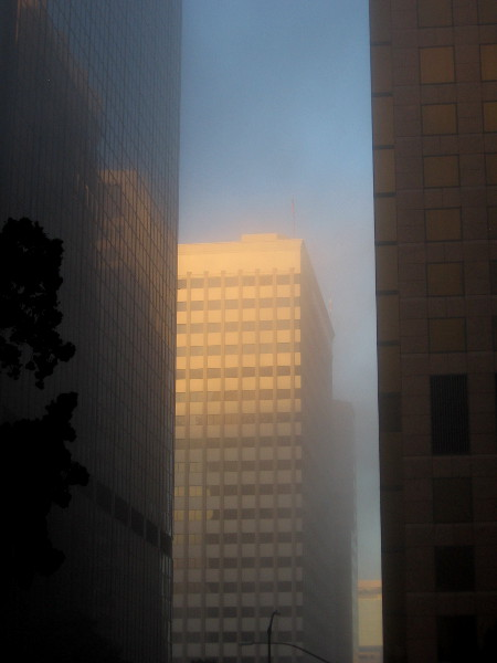 Beautiful light on tall ghostly buildings.