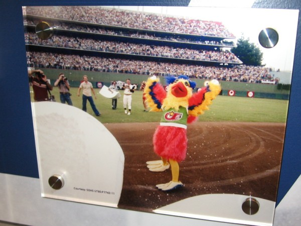 It's the world famous mascot, the San Diego Chicken!